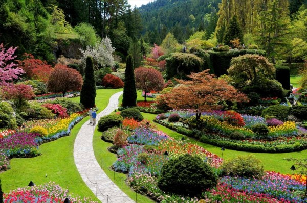 jardines butchart canadá