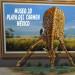 museo 3D de Playa del Carmen en México