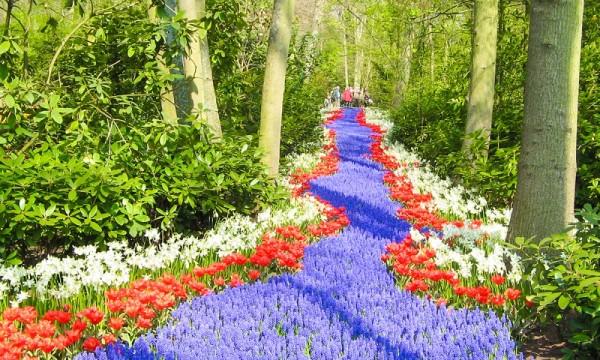 Royal Tulip Parque Keukenhof, Holanda