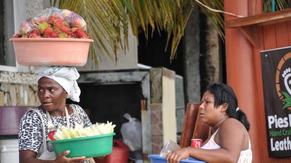 venta frutas tropicales honduras