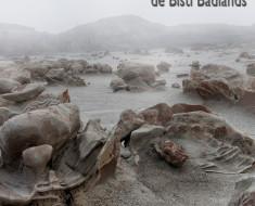 El paisaje extraterrestre de Bisti Badlands