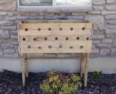 19 hoyos caja de madera