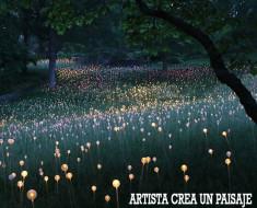 Artista crea un paisaje de cuento de hadas con 50.000 luces