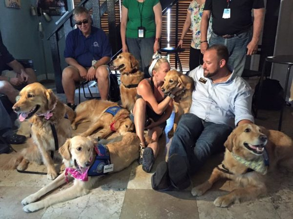 Perros amorosos brindan consuelo a las víctimas de la masacre de Orlando