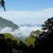 Reserva de la Biósfera El Triunfo en Chiapas