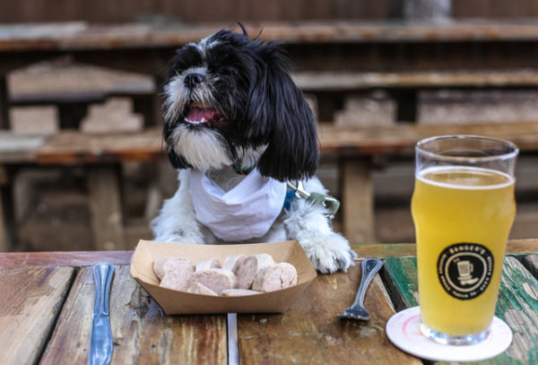 10 restaurantes de la CDMX a los que puedes llevar a tu mascota