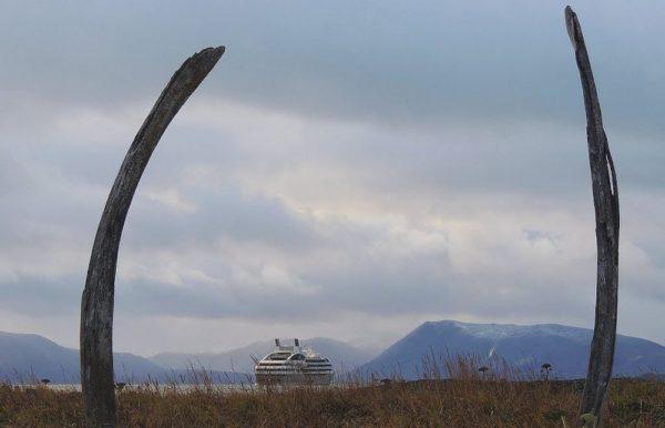 El paseo de las ballenas de la Isla de Yttygran