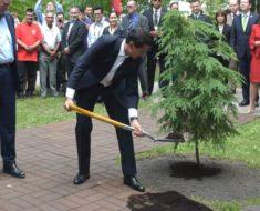 Peña Nieto vuelve a hacer el ridículo y no supo sembrar un árbol
