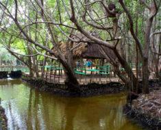 balneario el corchito en yucatan