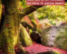 bosque de broceliande bretaña