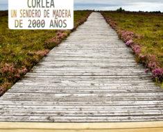 corlea sendero de madera 2000 años