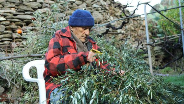 El secreto de la longevidad está en una isla griega