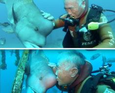 La amistad de 25 años entre Hiroyuki Arakawa y el pez japonés Yuriko