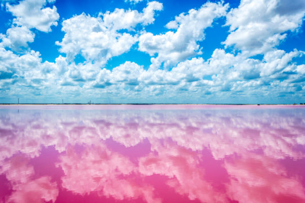 Las Coloradas, la playa rosa de Yucatán en México
