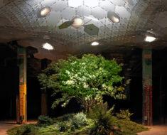 Nueva York contará con el primer parque subterráneo en el mundo