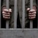 Campesino lleva 6 meses en prisión por matar 3 conejos para poder comer, podría enfrentar condena de 9 años