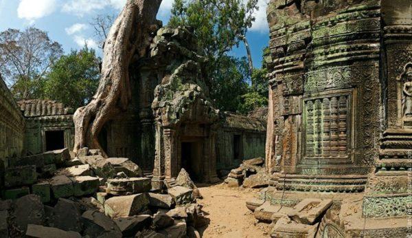 templo ta prohm camboya