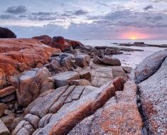 Bay of Fires | La fascinante costa naranja de Australia