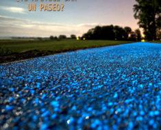 Este fascinante carril luminoso en Polonia se carga con el sol para brillar en la noche