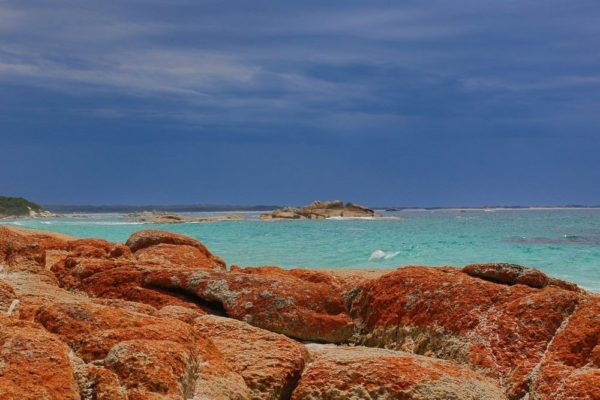 costa naranja de tasmania bay of fires