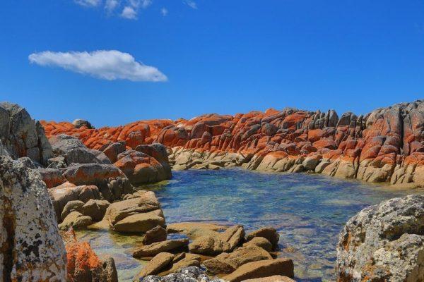 costa naranja de tasmania bay of fires