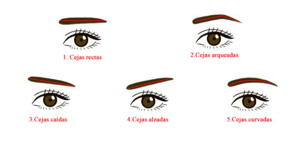 Descubre tu personalidad según tu tipo de cejas