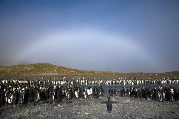 fotos de arcoiris blanco