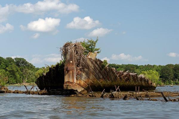 La misteriosa flota fantasma de Mallows Bay