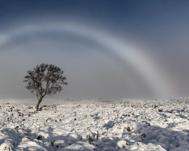 ¿Has tenido la suerte de ver un arcoíris blanco alguna vez? ¡Pues así se ven!