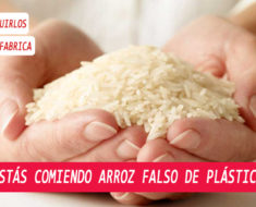 Tenga mucho cuidado al comprar arroz podría ser arroz plástico