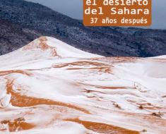 Las espectaculares fotos de nieve en el Sahara que te quitarán el aliento