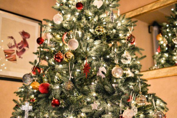 Los mejores sitios para comprar un árbol navideño natural en la CDMX