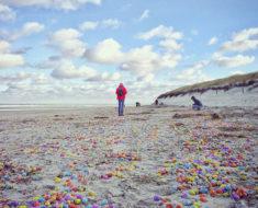 Miles de huevos Kinder aparecieron misteriosamente en una costa de Alemania