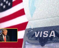 Mujer mexicana regresa su visa al consulado estadounidense por repudio a Donald Trump