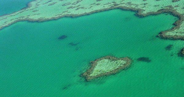 arrecife corazon australia
