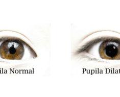 significado pupilas confiar pareja
