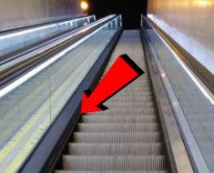 ¿Te has preguntado por qué las escaleras mecánicas tienen cepillos?