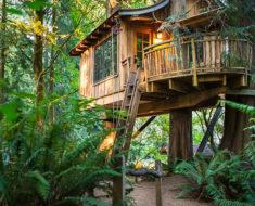 fotos arquitectura naturaleza