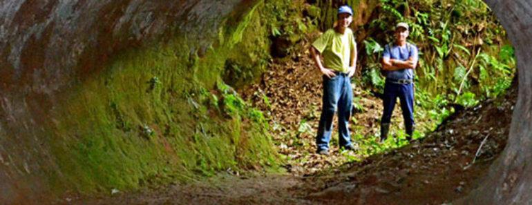 Paleoburrows, los enigmáticos túneles de América del Sur