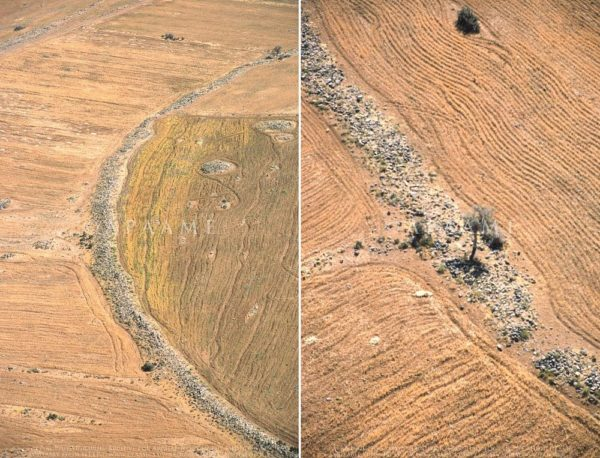 Nadie sabe qué fue lo que originó estos misteriosos círculos en Jordania