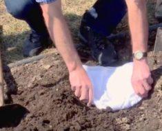 Los canadienses están enterrando sus calzoncillos. ¿Por qué lo hacen?