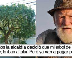 El ayuntamiento taló su árbol de 30 años, pero su venganza fue épica