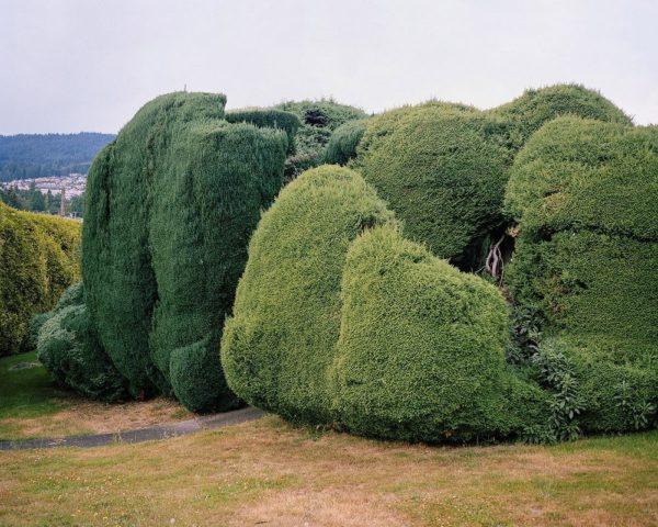 El maravilloso arte de los jardines topiarios