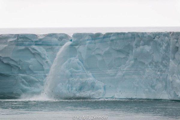 Svalbard sorprende al mundo con sus majestuosas cascadas glaciares