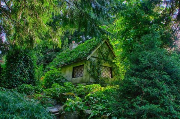 Casa forestal escondida