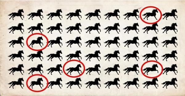 ¿Crees poder resolver este acertijo en menos de 30 segundos? Hasta ahora nadie ha podido