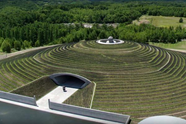 El buda de Sapporo escondido en una colina entre los campos de lavanda