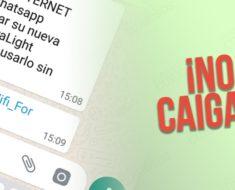 Cuidado con el engaño que circula anunciando WhatsApp Premium, es falso y peligroso…