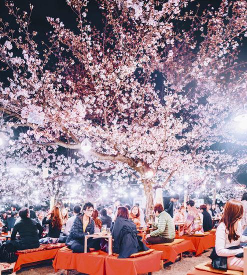 25 cosas increíbles de Japón que quizás no sabías