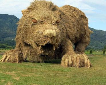 Estos estudiantes japoneses hacen esculturas increíbles con paja de arroz